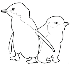 Penguin Coloring Pages Printable Penguin Coloring Page Penguin