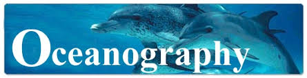 Image of the word oceanography with dolphins in the background