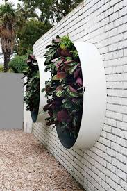 custom living wall design - Design by Vertical Gardens Australia.