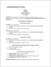 Food Runner Resume Example 169866 Cv Copy Sample Job Resume Examples