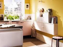 Small Picture Ikea Kitchen Design Always Trends Home Improvement 2017