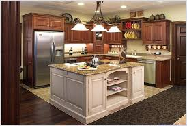Most Popular Kitchen Cabinets Colors 2017 Cleanerla Com