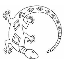 Small Picture Top 10 Free Printable Lizard Coloring Pages Online