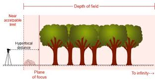 Image result for Depth of field of infinite photography