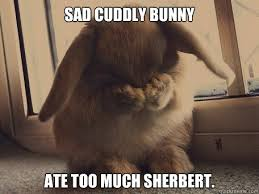 Sad Cuddly Bunny memes | quickmeme via Relatably.com