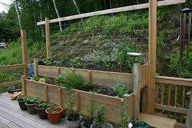 Small Picture Deck Vegetable Garden Ideas Growing Vegetable Gardens On A Deck