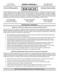 Sample Resume For Sales Mesmerizing Resume Template Business To Business Sales Resume Sample Free
