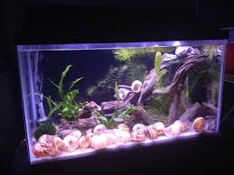 diy fabric aquarium background