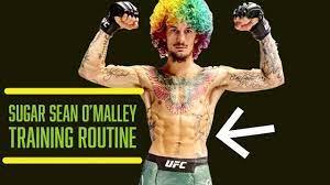 Suga Sean O'Malley - Training Routine ...