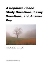 cheap list of essay questions list of essay questions deals a separate peace chapter questions essay questions and answer key