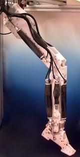 Leg Wikipedia Robot Leg Wikipedia