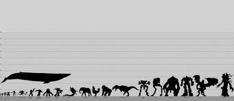 Robot Size Chart The Ultimate Sci Fi Size Chart Shows You How The Enterprise