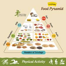 Food Group Pyramid Chart Food Pyramid 5 Building Steps Of A Food Pyramid You Should