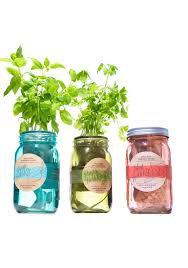 Herb Kitchen Garden Kit Oprahs Favorite Things 2015 Modern Sprout Garden Jar Three Pack