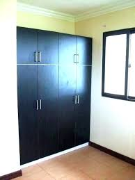 built in cabinets bedroom ins closet with doors master