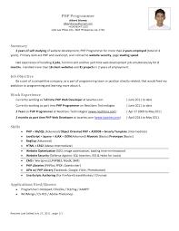 Php Developer Sample Resume Resume Format For Php Developer Fresher New Example Sidemcicek Web 1