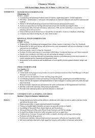 Coordinator Resume Examples Templates Marketing Operations Sample