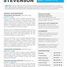 Professional Resumes Templates Free Free Professional Resume Template Downloads Resume For Your Job 55