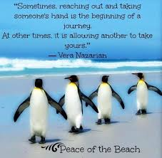 All information about penguin love quotes. The 25 Best Penguin Quotes Ideas On Pinterest Penguin Love Regarding Elegant Penguin Quotes Gallery Penguin Love Quotes Penguin Quotes Penguin Love