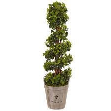 best office plants no sunlight. Best Office Plants No Sunlight. Nearly Natural Silk 4-foot English Artificial Indoor/ Sunlight