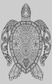 Turtle Coloring Pages Ocean Life Coloring Pages For Adults 20