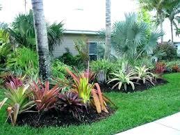 low maintenance landscaping plants bushes modern front yard in pots garden slow growing easy