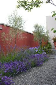 Small Picture 323 best Water Wise Landscaping images on Pinterest Landscaping