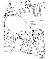 Small Picture 291 best Pig Coloring Pages images on Pinterest Drawings