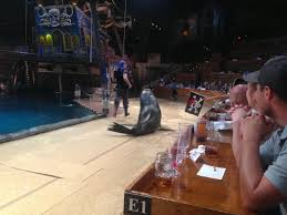 Shot Of The Shows Sea Lion Also Shows The Upfront