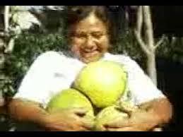 Resultado de imagen para el milagro de almolonga- guatemala