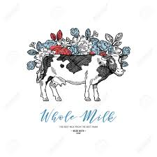 Cow Template Farm Cow With Flowers Design Template Cow Illustration Vector