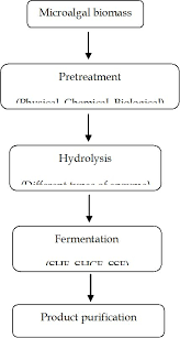 Bioprocess Flow Chart Analysis Of Process Configurations For Bioethanol Production