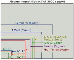 Aps Sensor Size Chart Whats The Crop Factor Between Aps C And M43 Micro Four