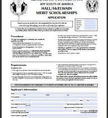 eagle scout essay application