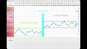 Ovulation Chart Pregnancy Signs Pin On Blogs Fun Sites