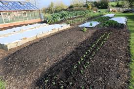 no dig gardening course
