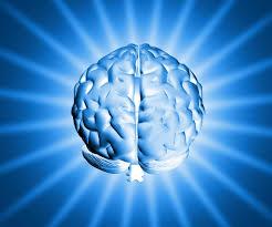 Resultado de imagem para remédios para memoria