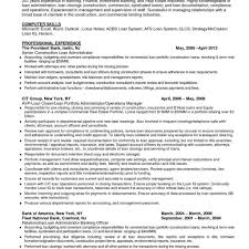 Resume Profile Samples Healthcare Business Analyst Resume Mind