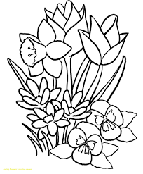 Spring Flowers Coloring Pages Printable Photos Of Good With Flower