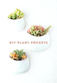 rectangle wall planter ceramic shane powers ceramic wall planters australia flower