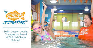 Swim Lesson Levels Changes On Board At Goldfish Swim School