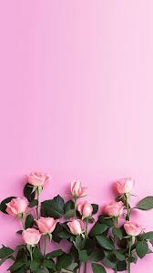 flower wall paper download pink roses download more floral iphone wallpapers at