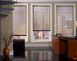DuetteDouglas Window Blinds