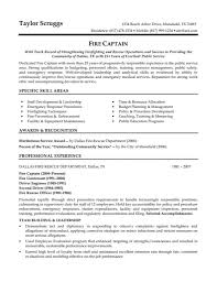 Security Resume Objective Examples Effective Resume Examples
