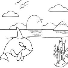 Small Picture Killer Whale Coloring Pages Beautiful Little Killer Whale With