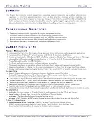 Resume Critique Service Professional Resume Review Resume Samples