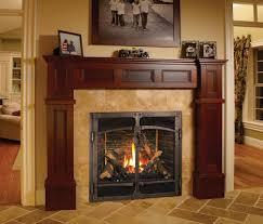 Fireplaces: astounding fireplace doors menards Fireplace ...
