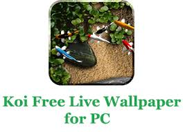koi free live wallpaper app