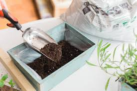 diy portable herb garden