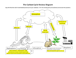 Carbon Cycle Flow Chart Carbon Cycle Review Diagram